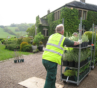 How Caroline Benedict Smith works - Garden Design Cheshire - Making it happen