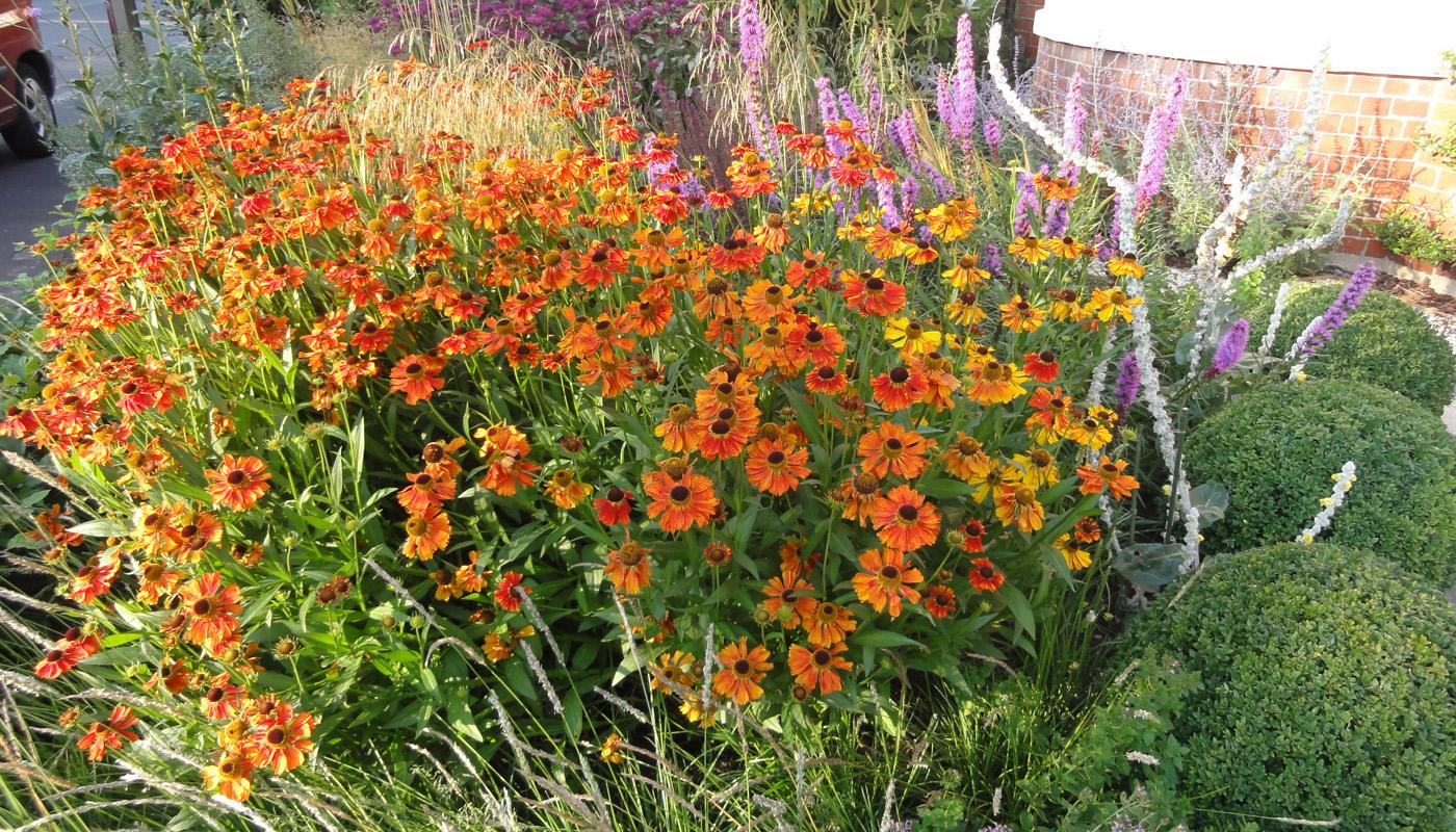 4-cheshire-front-garden
