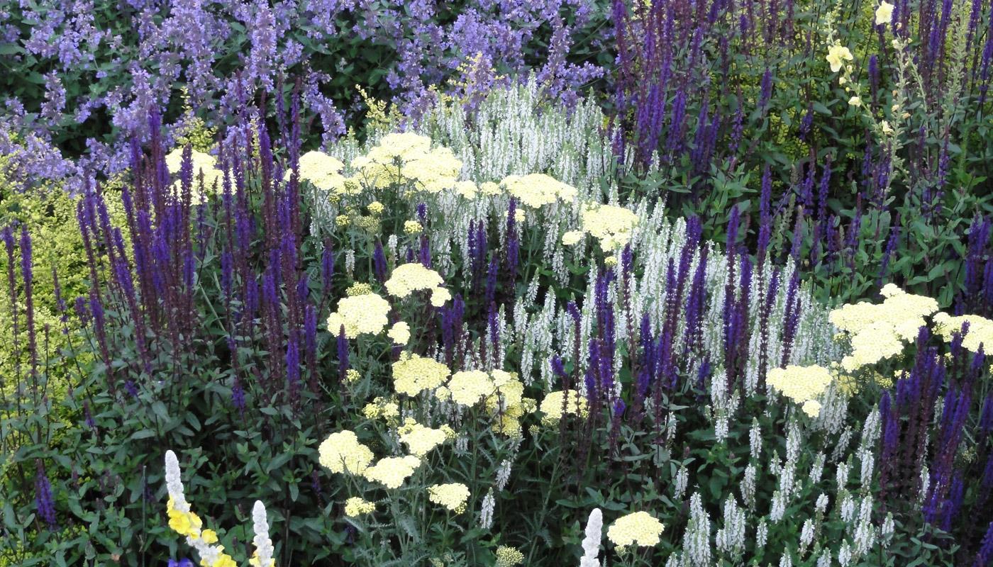 6-cheshire-front-garden