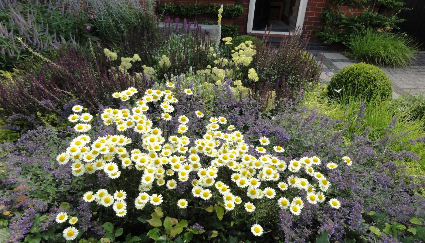 8-cheshire-front-garden