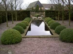 Buxus sempervirens for winter structure - Wollerton Old Hall - Caroline Benedict Smith Garden Design Cheshire