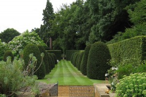 Clipped Yew and a beautifully mown lawn for winter structure at Broughton Grange- Caroline Benedict Smith Garden Design Cheshire