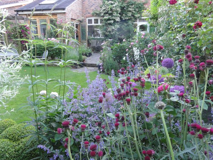 Manchester Garden Filled With Flowers - After 2 - Caroline ...